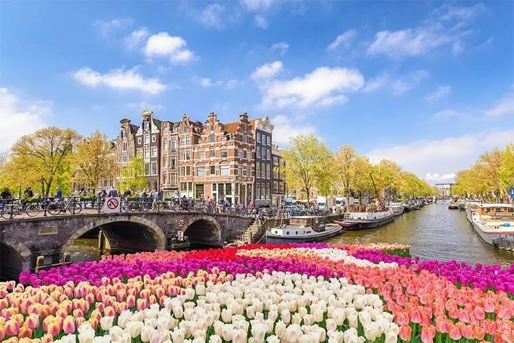 pierderea în greutate din Amsterdam