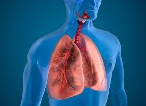 pierderea în greutate și lichidul asupra plămânilor