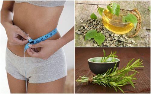 Bauturi care te ajuta in lupta cu obezitatea