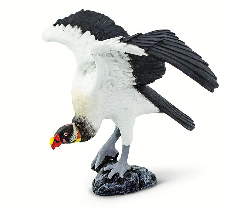ID vultur pierdere în greutate