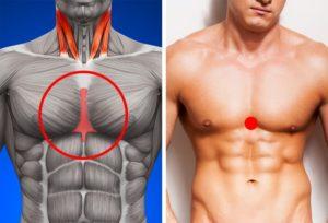 Totul despre metabolism – Ce este si cum poate fi antrenat pentru a stimula pierderea in greutate