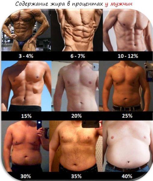 raportul de grăsime corporală la pierderea în greutate