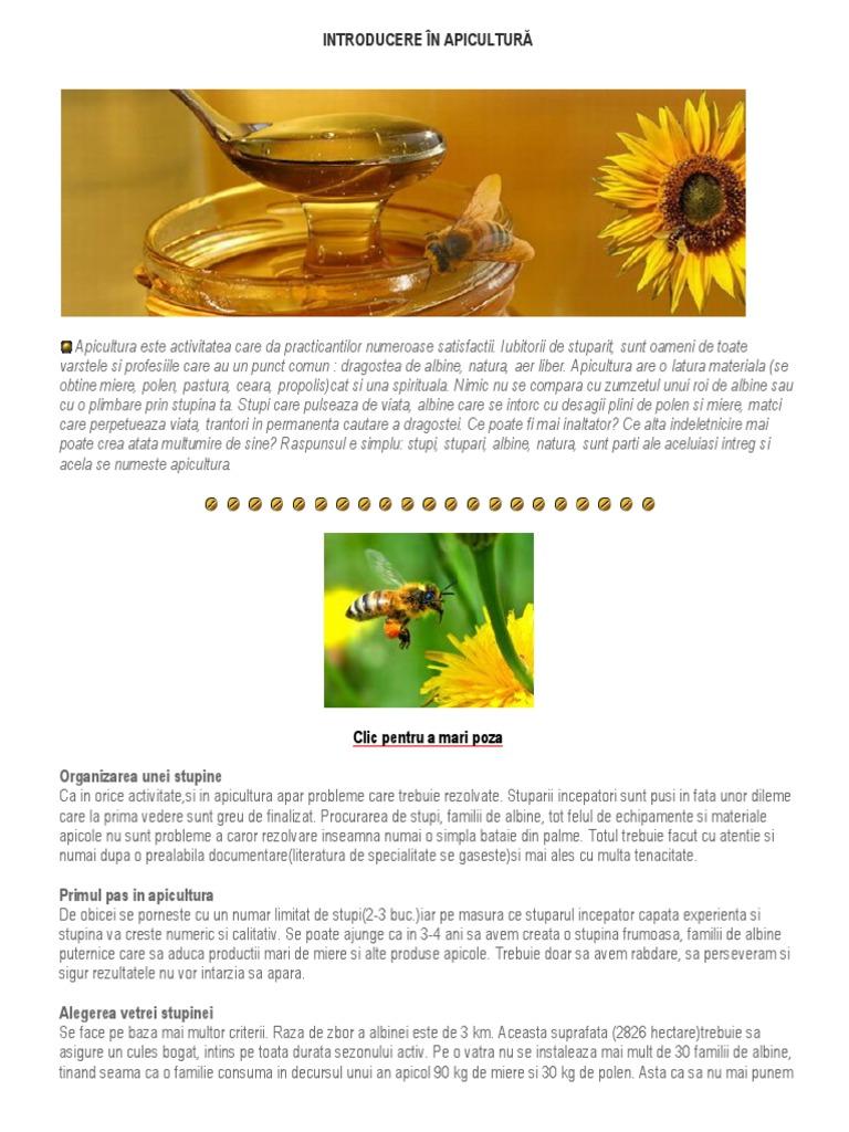 ucigașe albine efecte secundare arzător de grăsime)