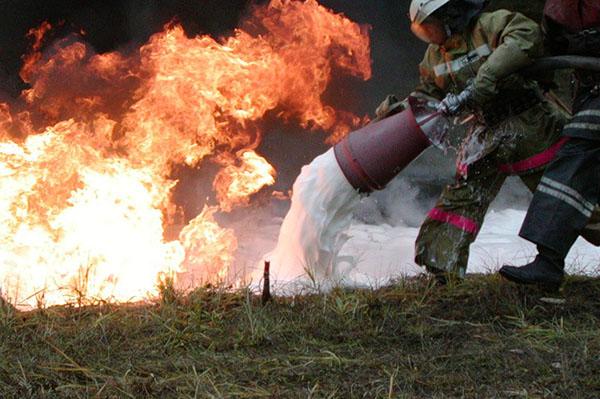 focuri de ardere a grăsimilor)