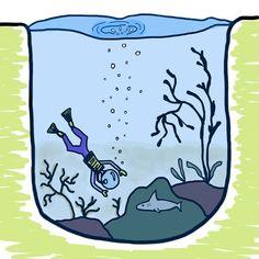 scuba diving te face să slăbești