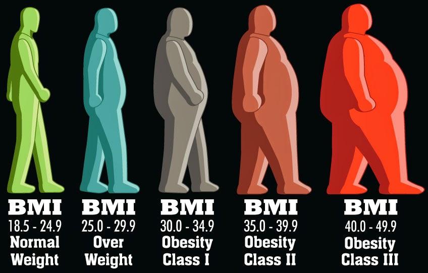 Metabolismul și greutatea corporală