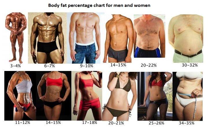 cum să pierzi în greutate și grăsime corporală)