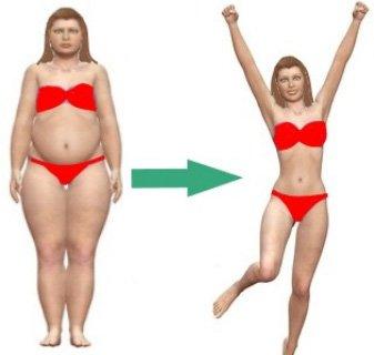 furnicături de ardere a grăsimilor este rubarb bun pentru pierderea în greutate