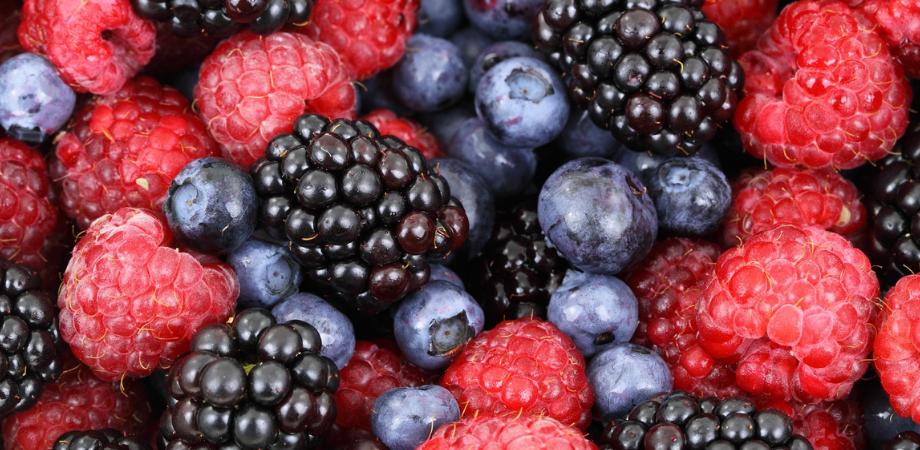 cele mai bune fructe de pădure pentru pierderea de grăsime