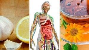 ajută mulethi la pierderea în greutate)