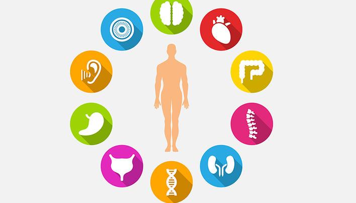 Greutatea corporala si dementa la persoanele varstnice | Despre medicina