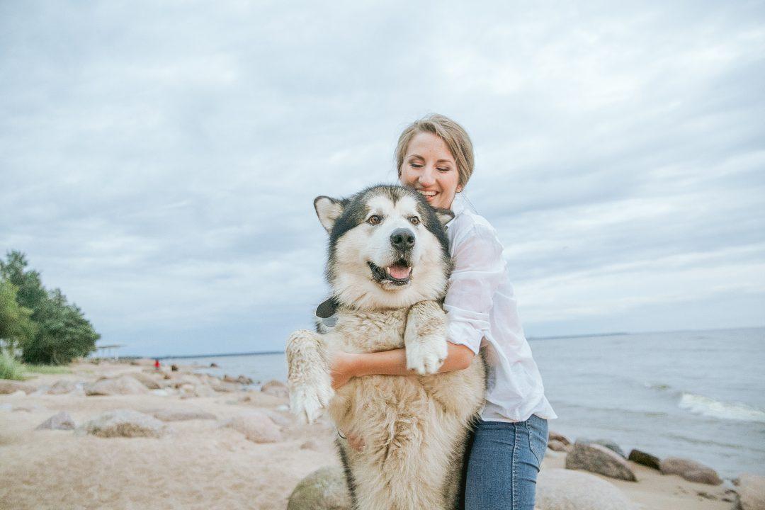 sfaturi pentru pierderea în greutate pentru animalele de companie