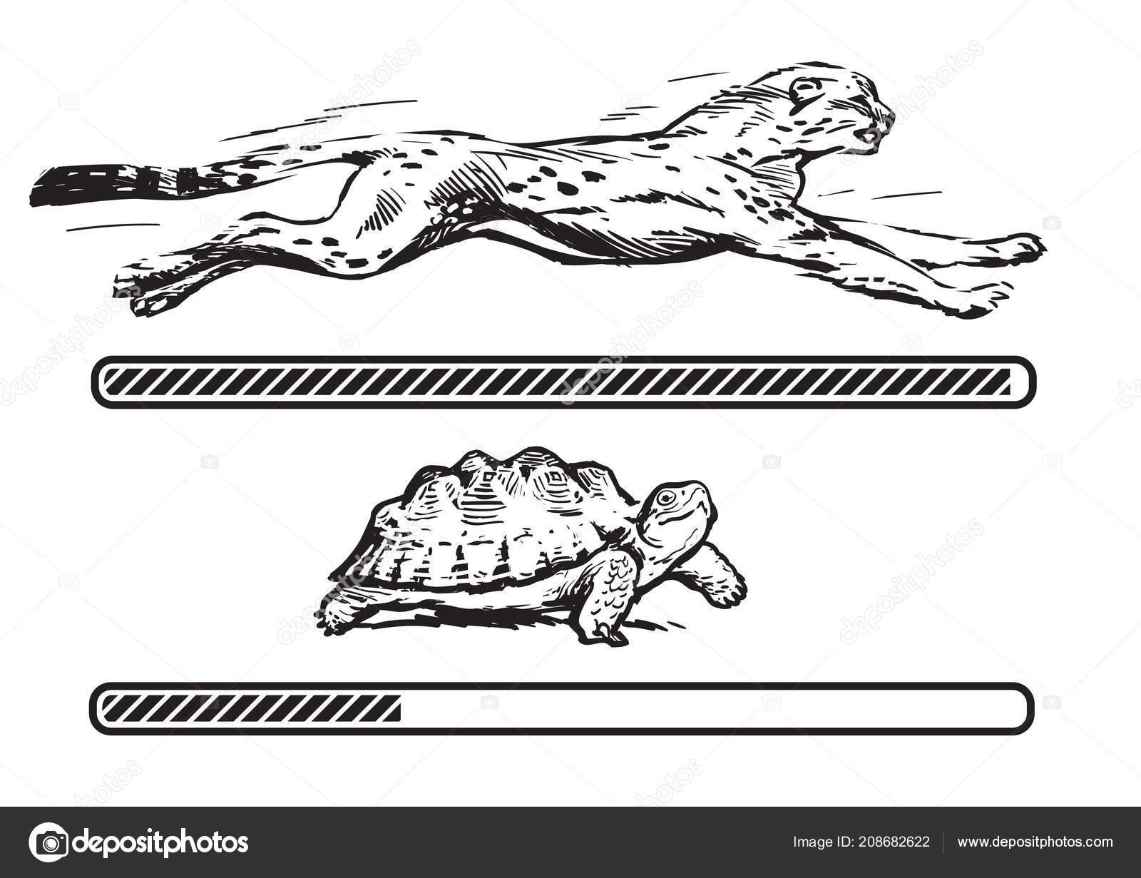 ajuta leopard gecko sa slabeasca)