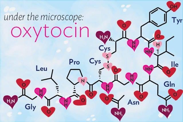 doză de oxitocină pentru pierderea în greutate pierdeți în greutate pentru serii bune
