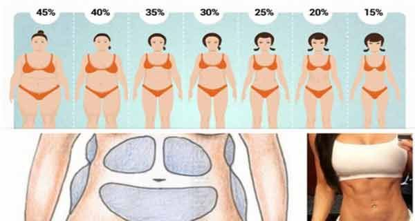 Ultimele kilograme de grasime Depozitele de grasime nu sunt fixe