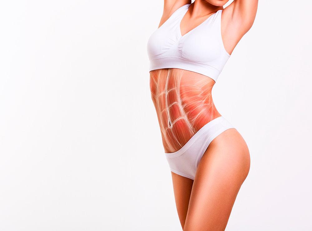pierdem celulele grase cele mai bune perioade pentru a arde grăsime